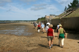 WCT Walk-Indian Neck-2012- 055