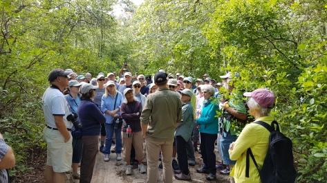 WCT Walk 2017 - Ethan Talking
