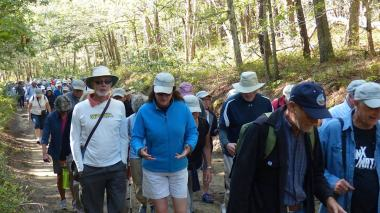 WCT Walk 2017 - Group walking 2