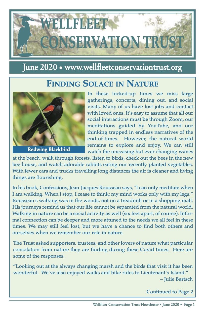 June 2020 newsletter p1